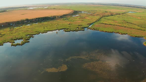 Thumbnail for Drone View of Floodplain Among Green Vegetation