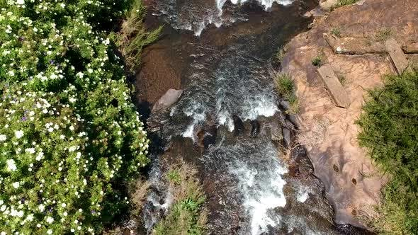 Thumbnail for Aerial Drone Shot of A River in The Jungle of South Africa