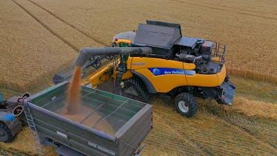 Combine unloading wheat into grain truck.