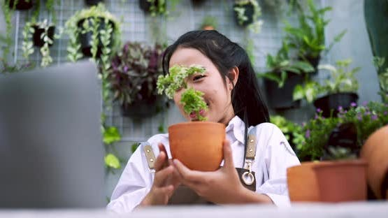 woman sell plant online laptop