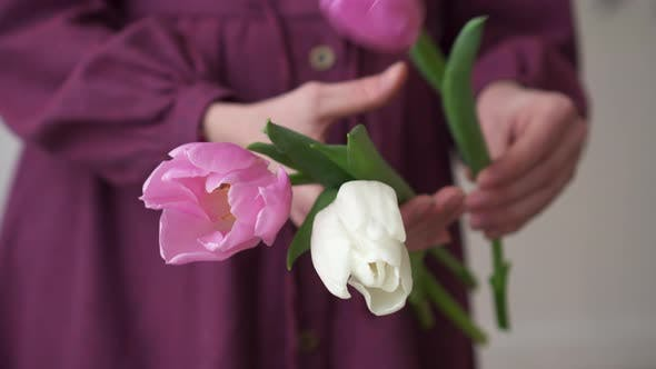Thumbnail for Close-up of Florist Gathering Bouquet of Tulip Flowers