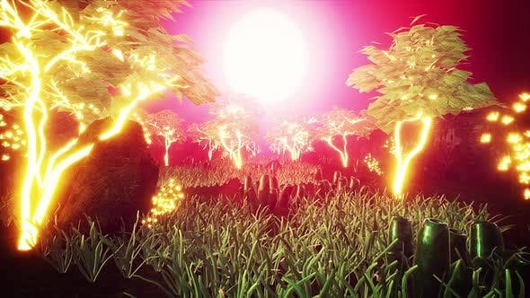 Thumbnail for Sunset Glowing Trees Garden