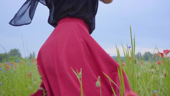 Cover Image for Unrecognizable Young Slim Girl Spinning and Dancing in a Poppy Field Happily. Connection with Nature