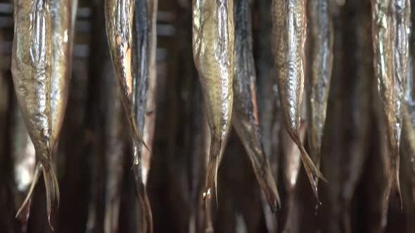 Thumbnail for Smoked Fish