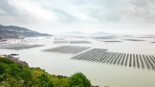 Time lapse of seaweed farms in China