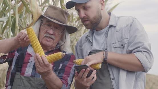 Thumbnail for Male Farmers Talking About Corn in Field