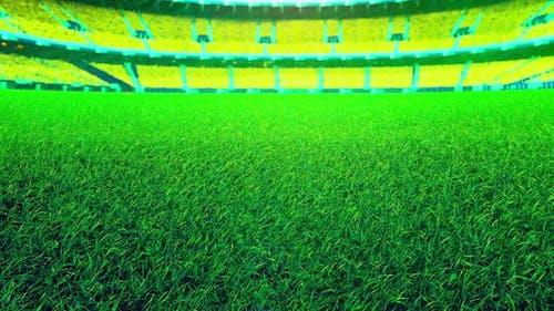 Flying On Grass In Green Stadium 01 HD