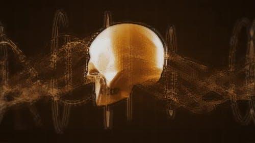 Human Biology DNA Skull Brain 4k