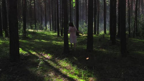 Someone Is Following a Girl in the Woods