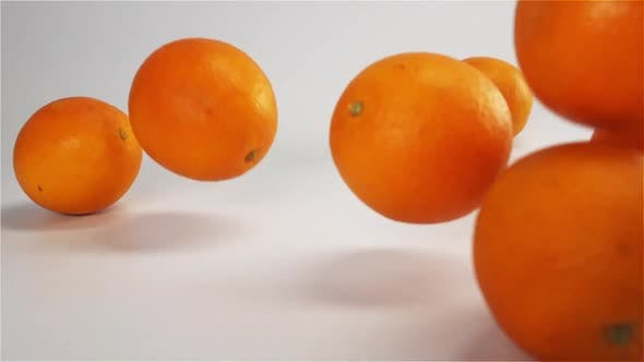 Cover Image for Oranges Falls and Bounce on White Wet Surface