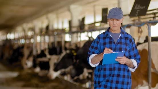 Successful Farmer at Livestock Farm