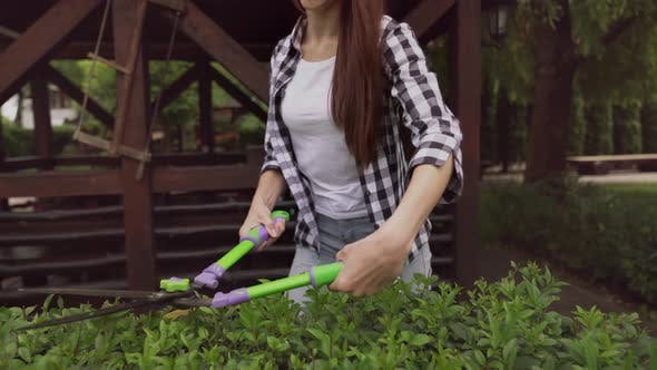 Thumbnail for Cheerful Brunette Lady Cutting Bushes with Hand Shears