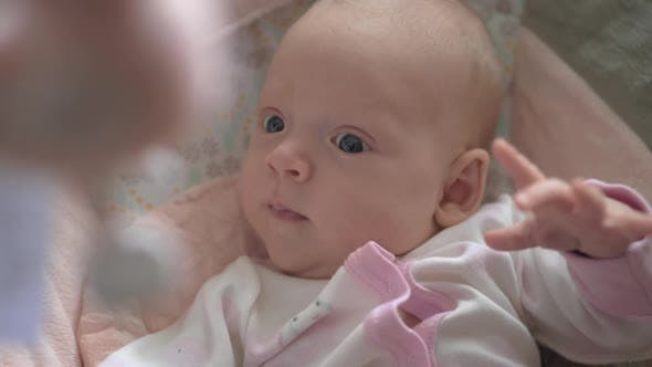 Lovely calm baby girl looking at toys over the head