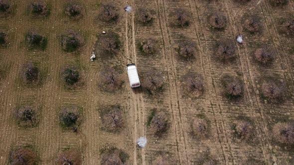 Drohnenbild des fahrenden Fahrzeugs im Garten