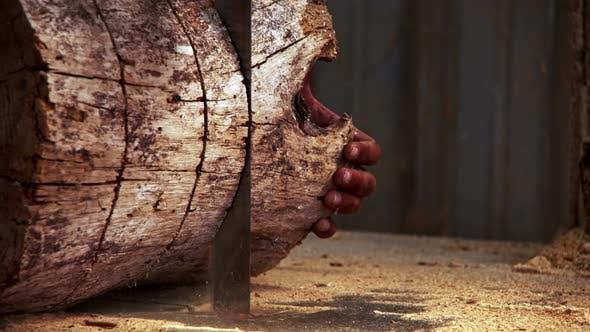 Cutting Woods In Carpenter