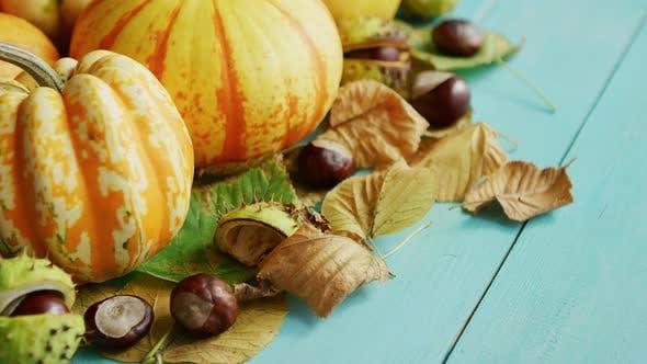 Thumbnail for Kürbisse verziert mit Kastanien und Blättern