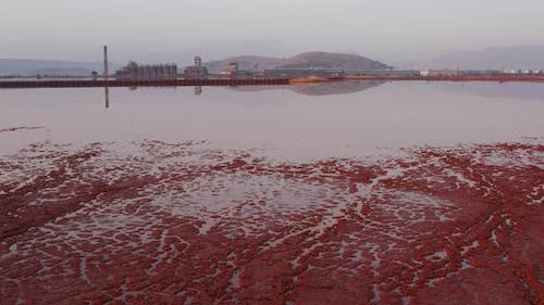 Crust on the edge of bauxite tailings (red mud) dump pond containing toxic waste