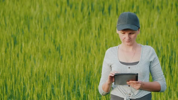 Thumbnail for Farmer with a Tablet in His Hands Working on a Wheat Field
