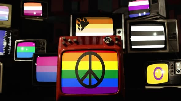 Thumbnail for LGBT Pride Flags on Retro TVs.