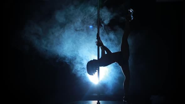 Thumbnail for 11Of23 Silhouette of a Sexy Female Pole Dancing