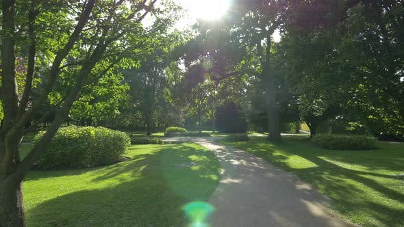 Alley in a park