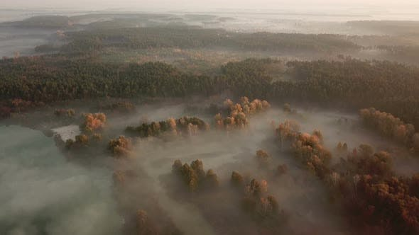 Thumbnail for Forest Lake in the Morning Fog, in the Rays of the Dawn Sun. Drone Footage.