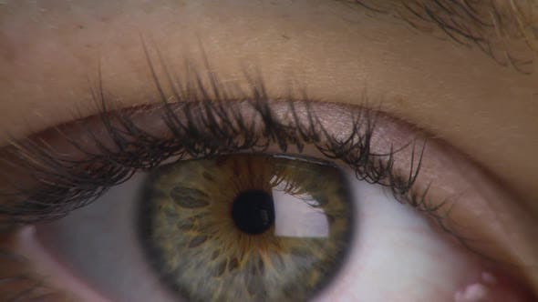 Thumbnail for Close-up of woman's eye