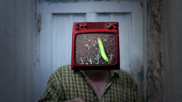 Thumbnail for Caterpillar Man