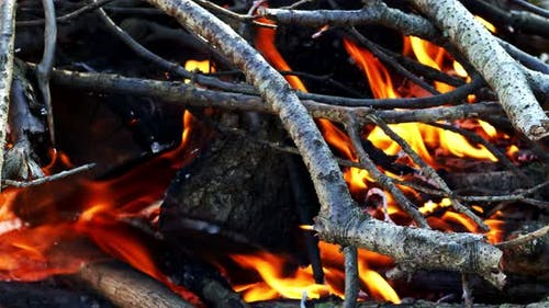 Wooden Fire Burning Like Hell 7