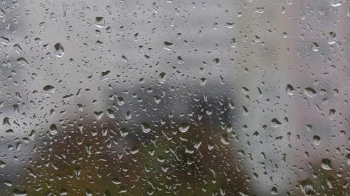 Window Glass In Drops Of Rain. Drops Run Down The Glass.