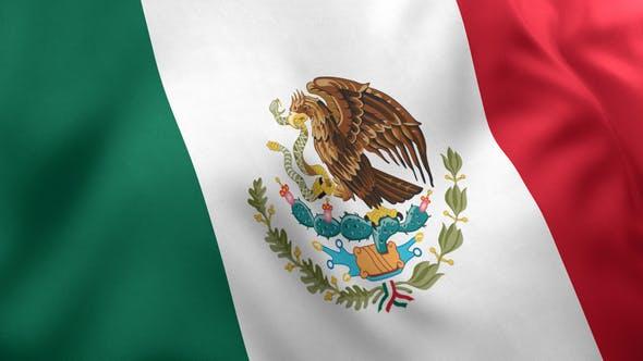 Mexico Flag / Mexican Flag