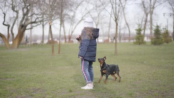 Wide Shot, Small Dog Barking at Little Caucasian Girl in Park. Scared Child Closing Ears with Hands