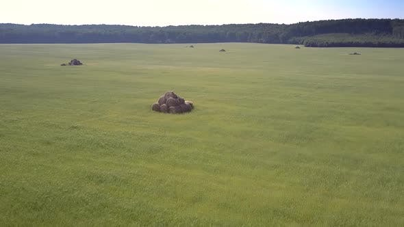 Thumbnail for Aerial Motion To Stacked Bales on Grass Field By Forest