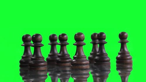 Black Pawns over Green Screen.