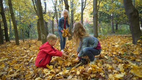Young children play with yellow leaves in the autumn Park. children throw leaves.