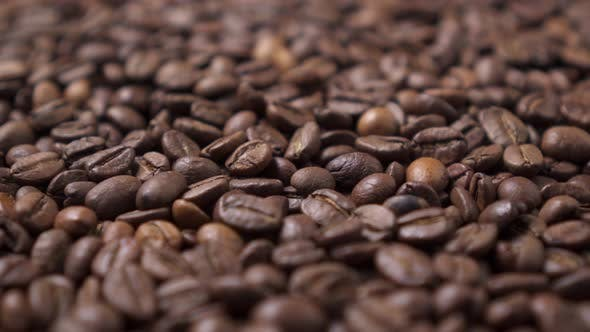 Thumbnail for Dark Roasted Coffee Beans Move in a Circle.