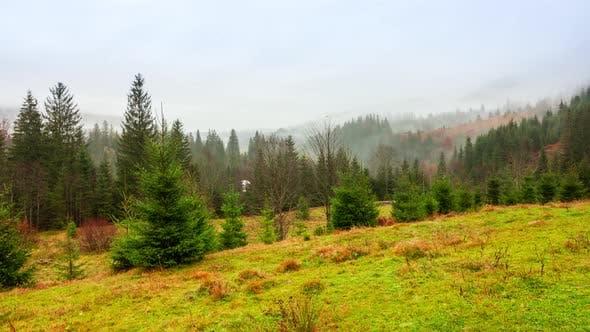 Ukraine Carpathians