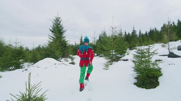 Thumbnail for Elf running in the forest