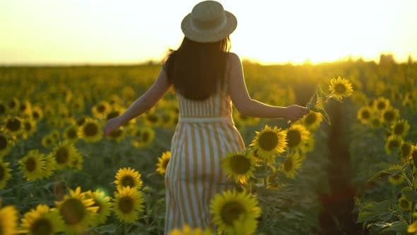 Thumbnail for Beauty Girl with Long Hair in Dress Running on Sunflower Field in Sunset Summer.