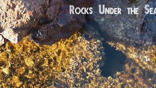 Rocks Under The Sea