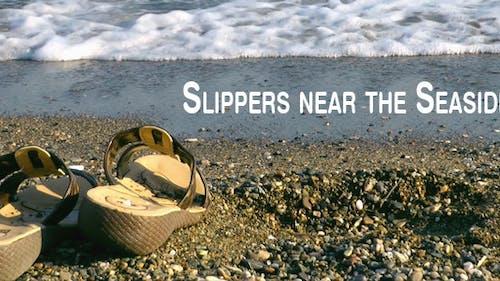 Slipper Near The Seaside