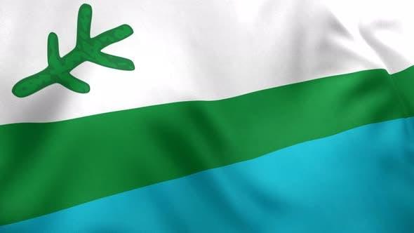 Labrador Flag (Canada) - 4K
