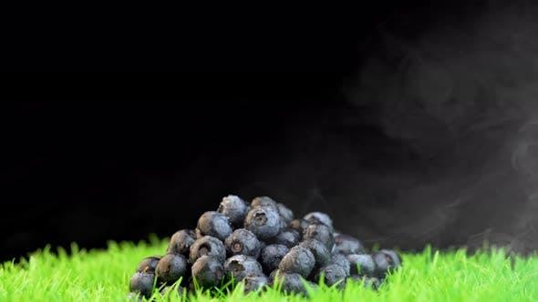 Thumbnail for Fresh,wet blueberries on grass against black background