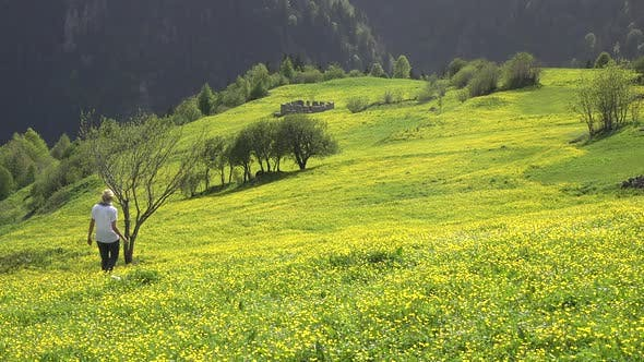 Cover Image for Woman Walks Alone in Meadow With Yellow Flowers on Plateau