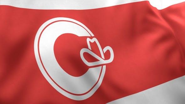Thumbnail for Calgary City Flag, Alberta
