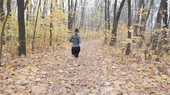 Young fit woman running in autumn forest training for the marathon. Run and sport concept