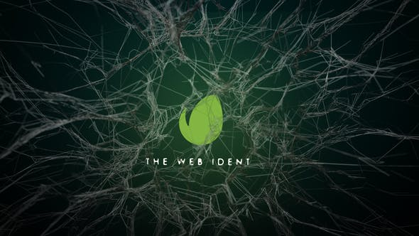 Thumbnail for Logo Webs Reveal