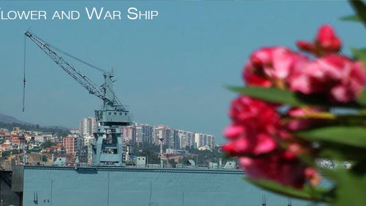 Thumbnail for Flower And War Ship