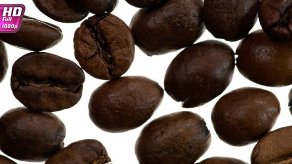 Thumbnail for Roasted Coffee Grains