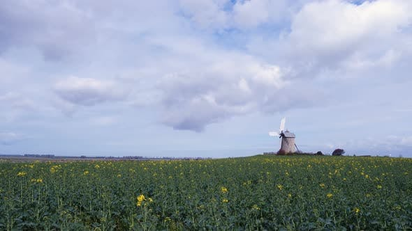 Old Windmill At The Field 6